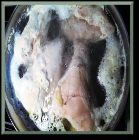 boilingchicken